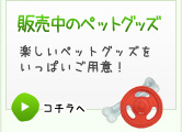 販売中の商品:2011年産のお米や、楽しいペットグッズをいっぱいご用意!